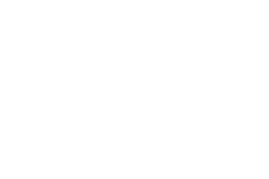 2019 Palm Springs Film Festival Audience Choice Award for Best Narrative Feature